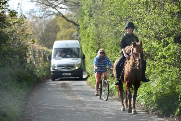 Horse, rider, cyclist, van